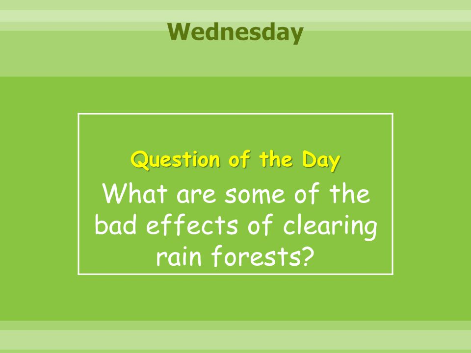 What are some of the bad effects of clearing rain forests