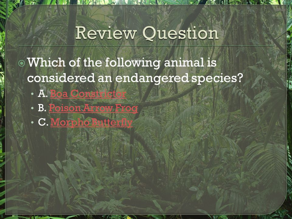 Review Question Which of the following animal is considered an endangered species A. Boa Constrictor.