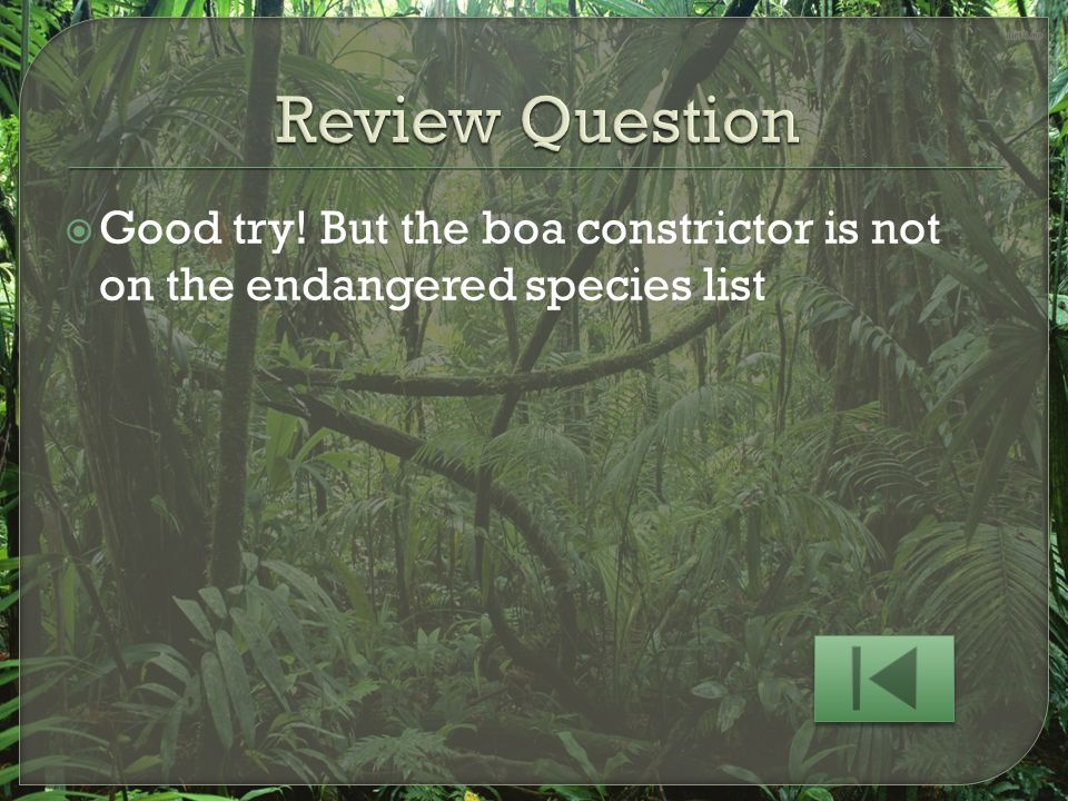 Review Question Good try! But the boa constrictor is not on the endangered species list
