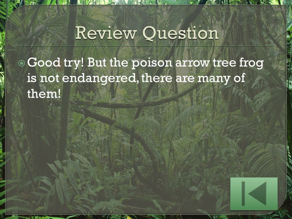 Review Question Good try! But the poison arrow tree frog is not endangered, there are many of them!