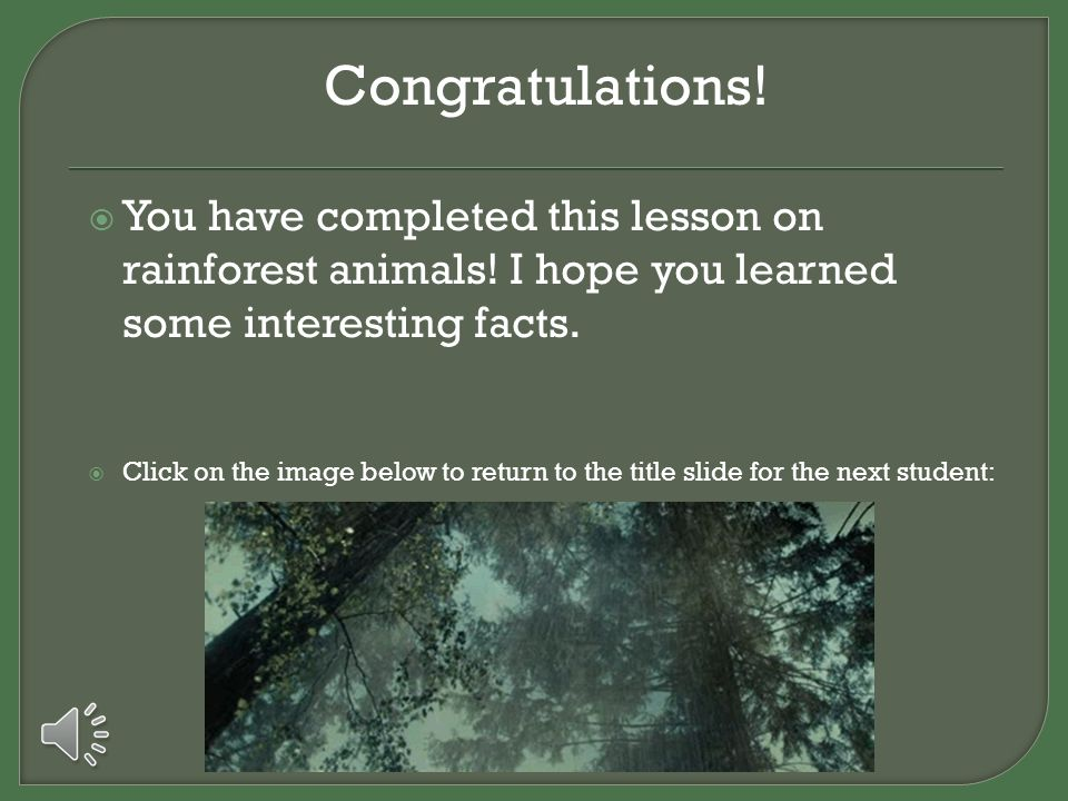 Congratulations! You have completed this lesson on rainforest animals! I hope you learned some interesting facts.