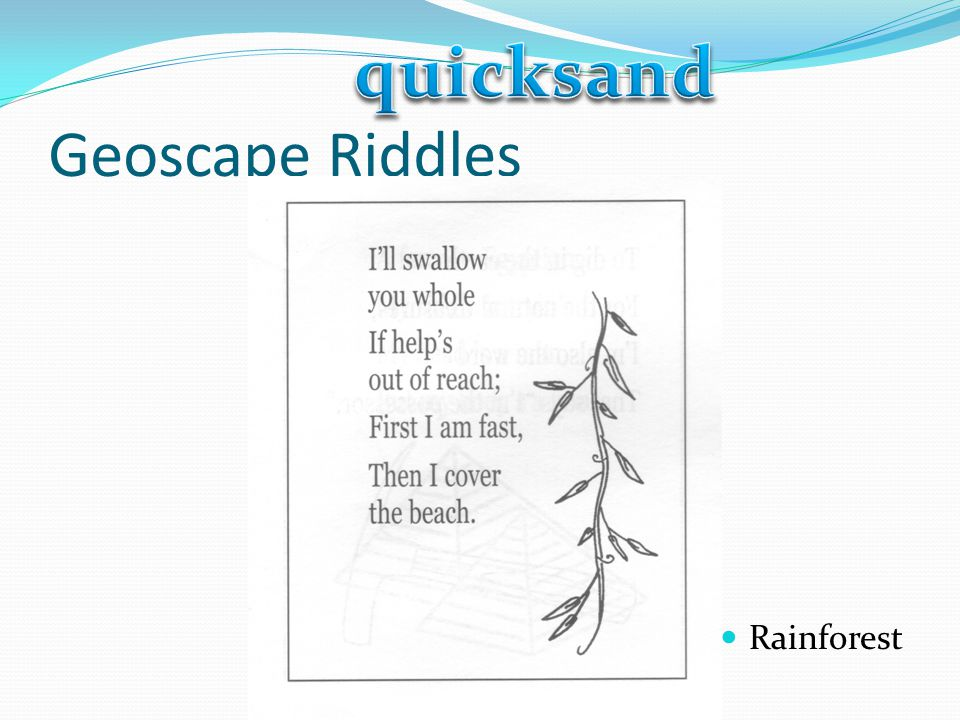 quicksand Geoscape Riddles Rainforest
