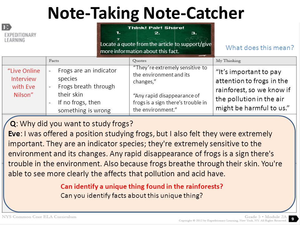 Note-Taking Note-Catcher