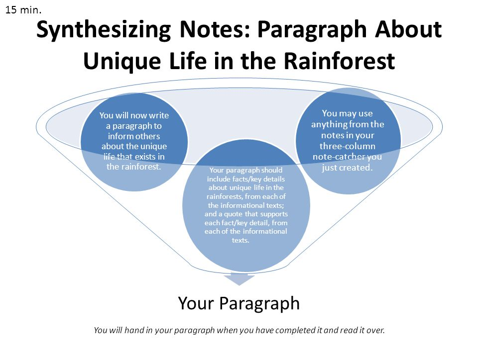 Synthesizing Notes: Paragraph About Unique Life in the Rainforest