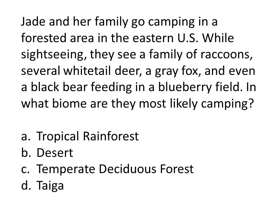 Jade and her family go camping in a forested area in the eastern U. S
