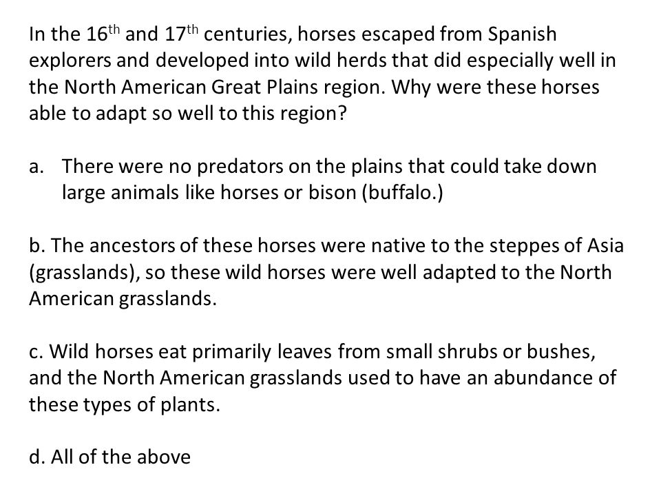 In the 16th and 17th centuries, horses escaped from Spanish explorers and developed into wild herds that did especially well in the North American Great Plains region. Why were these horses able to adapt so well to this region