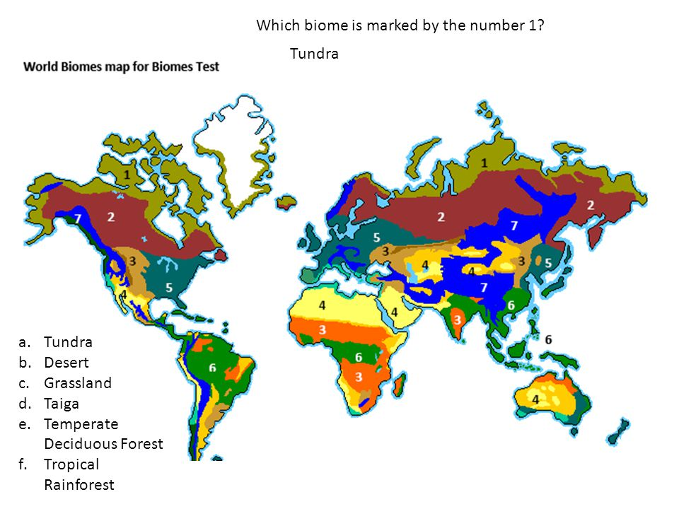 Which biome is marked by the number 1