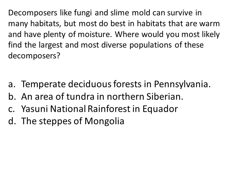 Temperate deciduous forests in Pennsylvania.