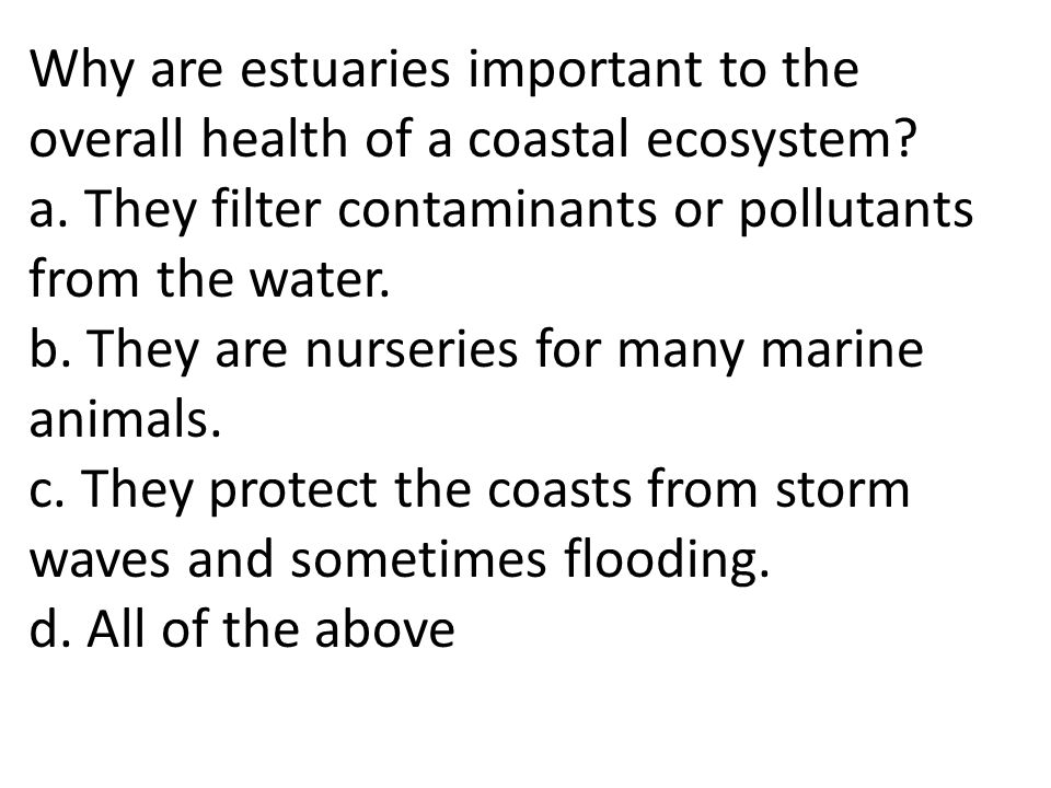 Why are estuaries important to the overall health of a coastal ecosystem