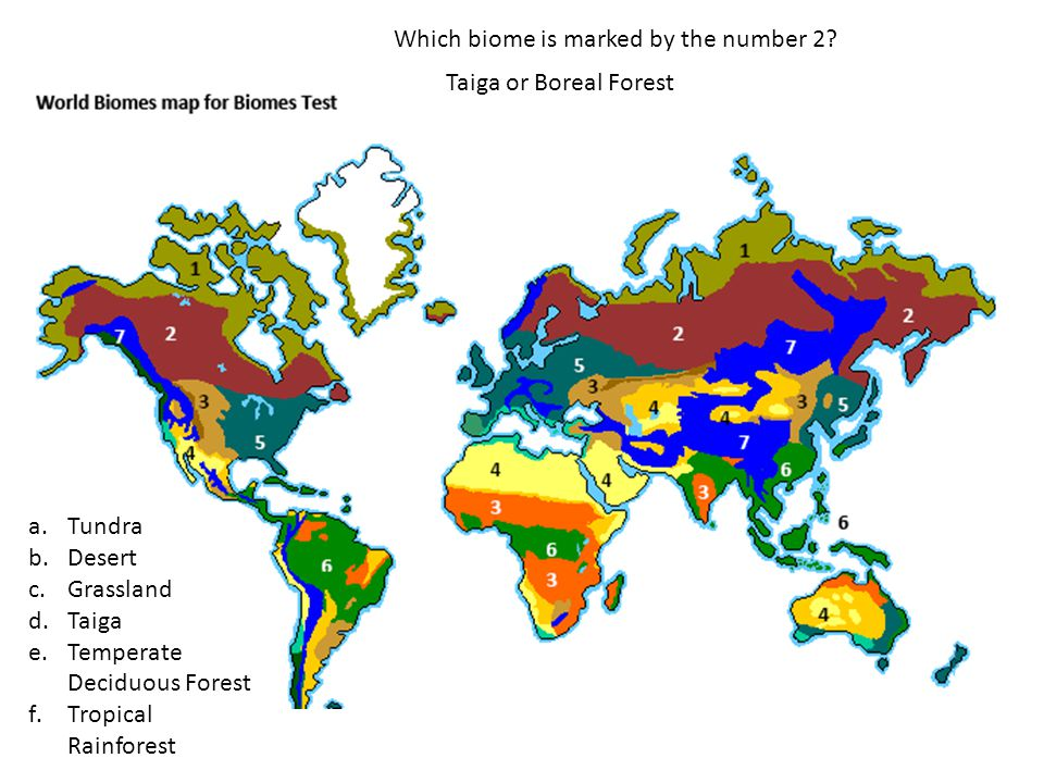 Which biome is marked by the number 2