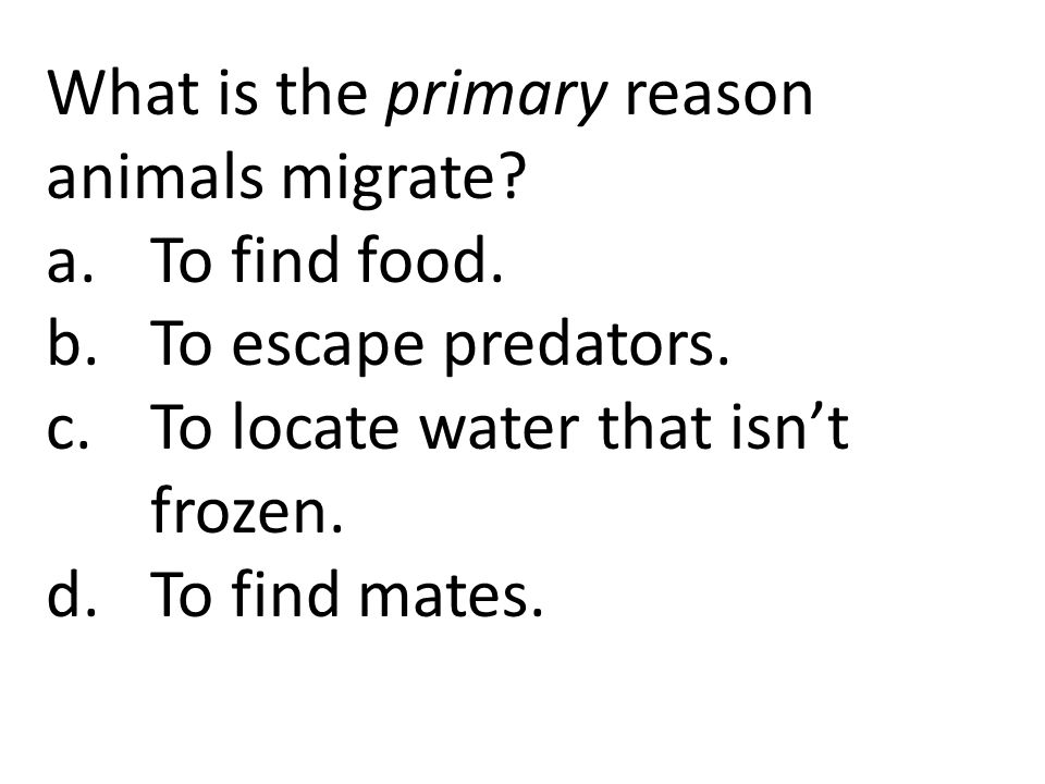 What is the primary reason animals migrate