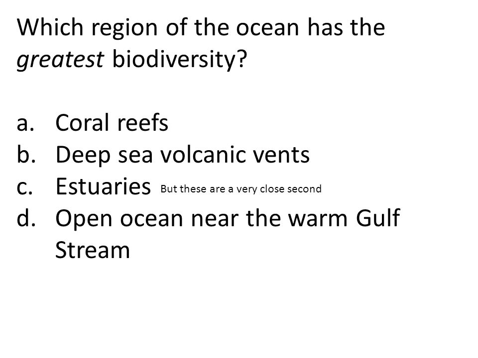 Which region of the ocean has the greatest biodiversity