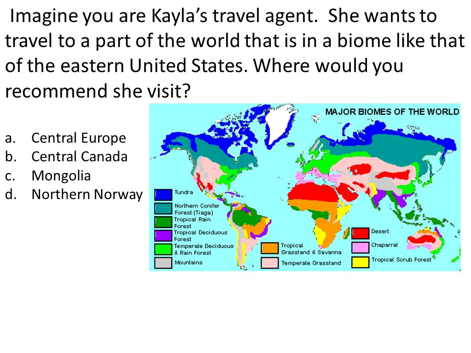 Imagine you are Kayla's travel agent