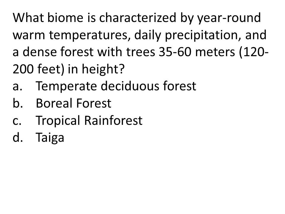 What biome is characterized by year-round warm temperatures, daily precipitation, and a dense forest with trees 35-60 meters (120-200 feet) in height