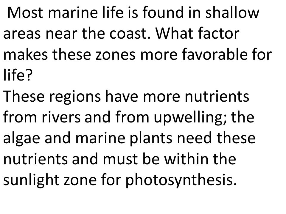 Most marine life is found in shallow areas near the coast