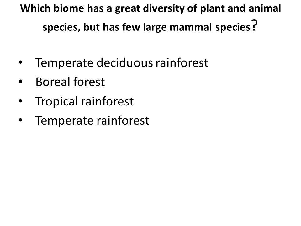Temperate deciduous rainforest Boreal forest Tropical rainforest