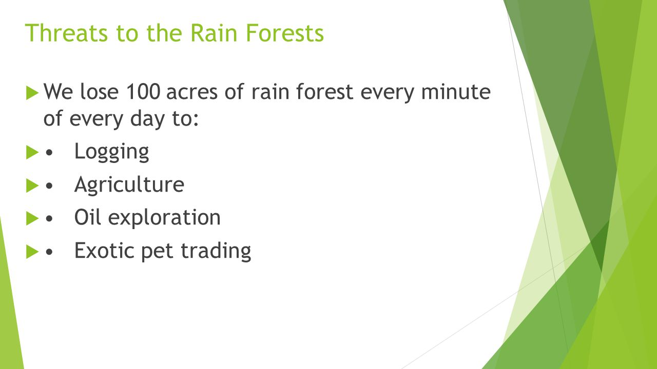 Threats to the Rain Forests