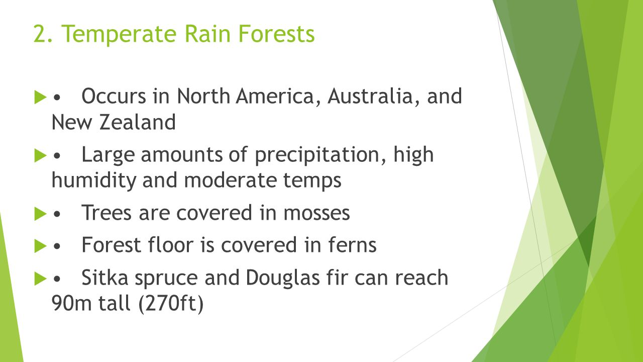 2. Temperate Rain Forests