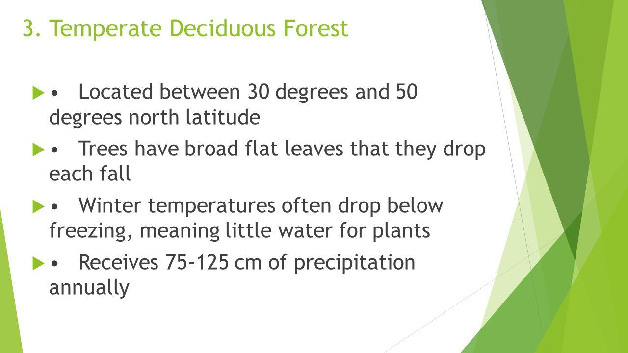 3. Temperate Deciduous Forest