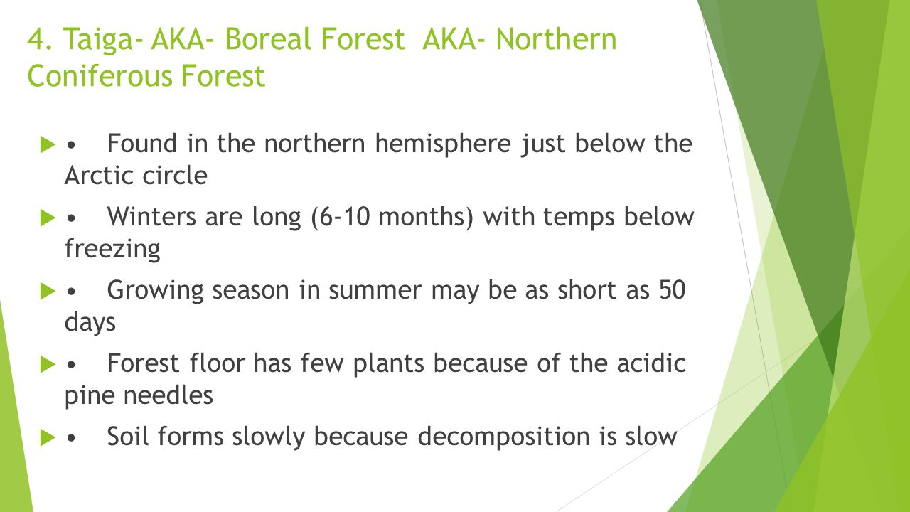 4. Taiga- AKA- Boreal Forest AKA- Northern Coniferous Forest