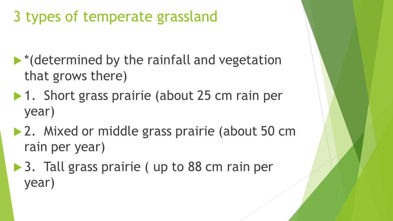 3 types of temperate grassland