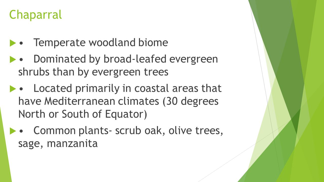 Chaparral • Temperate woodland biome