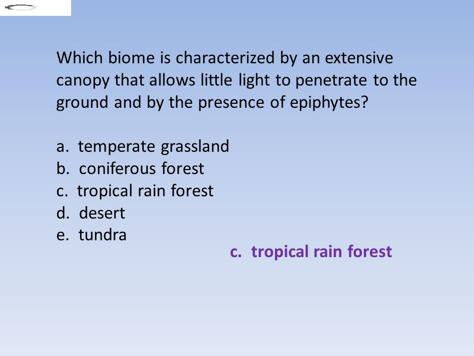 Which biome is characterized by an extensive canopy that allows little light to penetrate to the ground and by the presence of epiphytes (Activity: Aquatic Biomes)