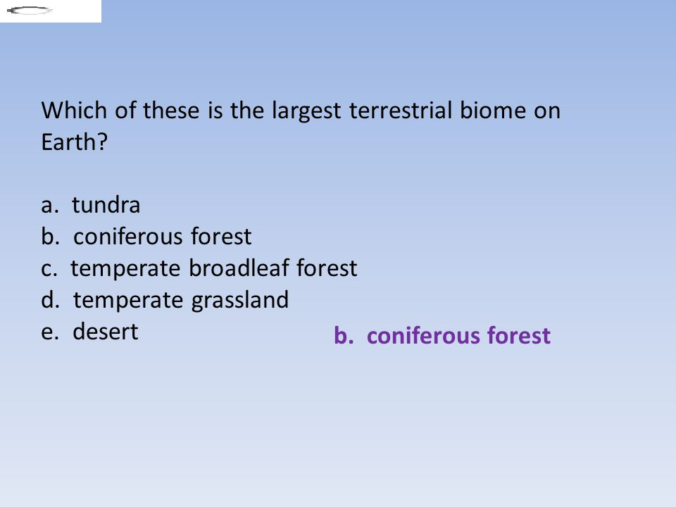 Which of these is the largest terrestrial biome on Earth