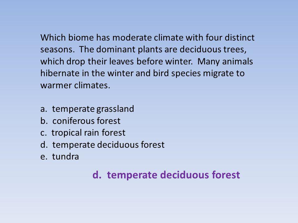 d. temperate deciduous forest