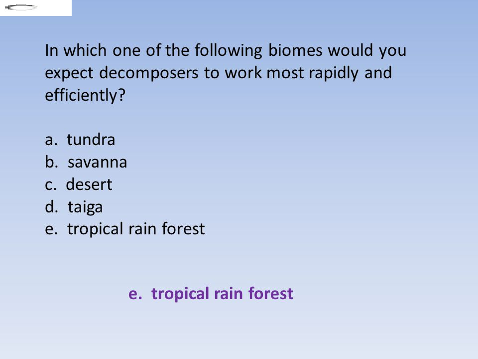 In which one of the following biomes would you expect decomposers to work most rapidly and efficiently