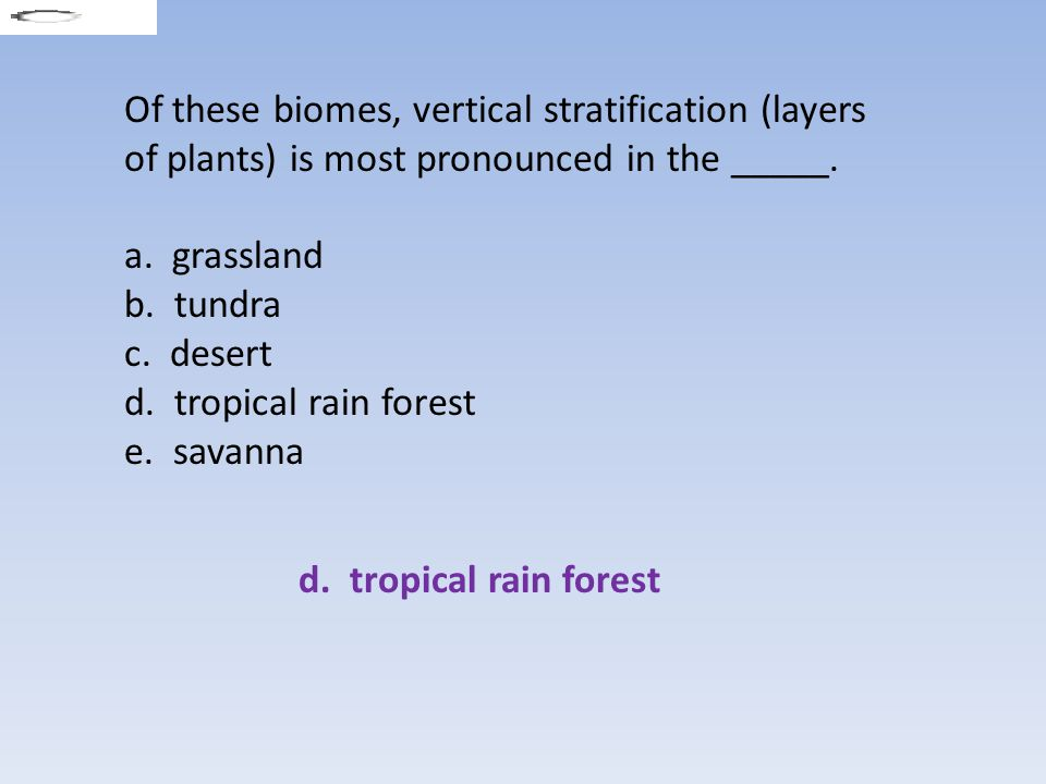 Of these biomes, vertical stratification (layers of plants) is most pronounced in the _____.
