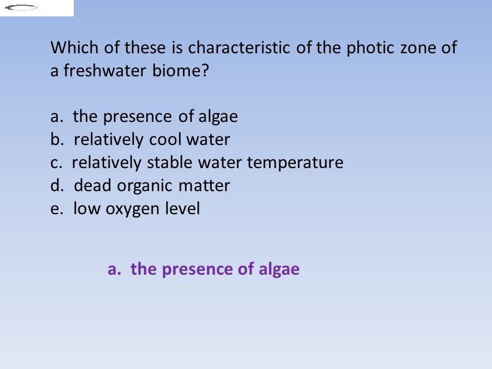 Which of these is characteristic of the photic zone of a freshwater biome
