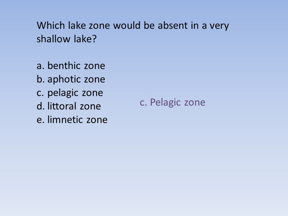 Which lake zone would be absent in a very shallow lake
