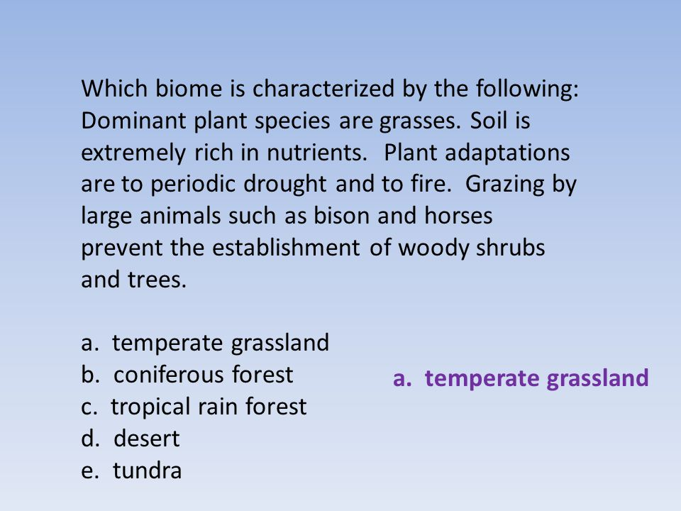 Which biome is characterized by the following: Dominant plant species are grasses. Soil is extremely rich in nutrients. Plant adaptations are to periodic drought and to fire. Grazing by large animals such as bison and horses prevent the establishment of woody shrubs and trees.