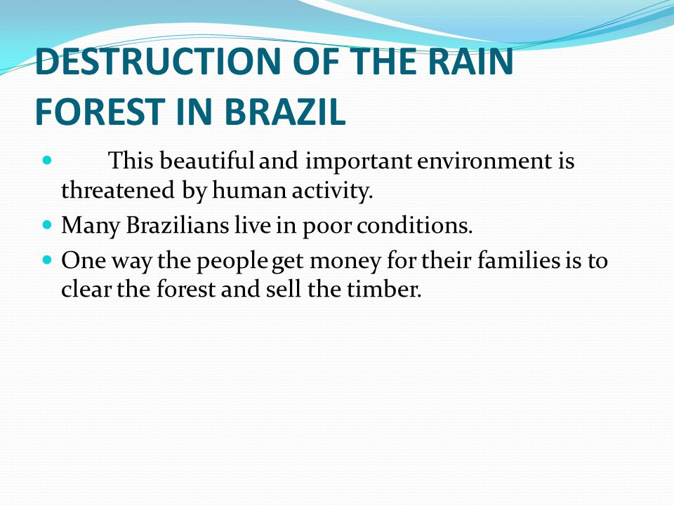 DESTRUCTION OF THE RAIN FOREST IN BRAZIL