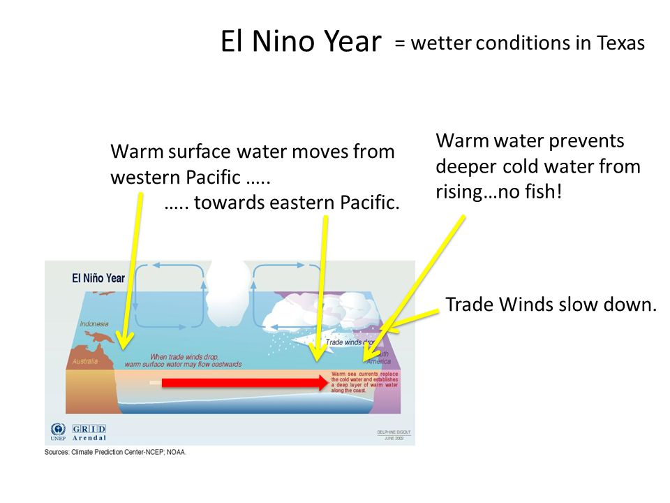 El Nino Year = wetter conditions in Texas