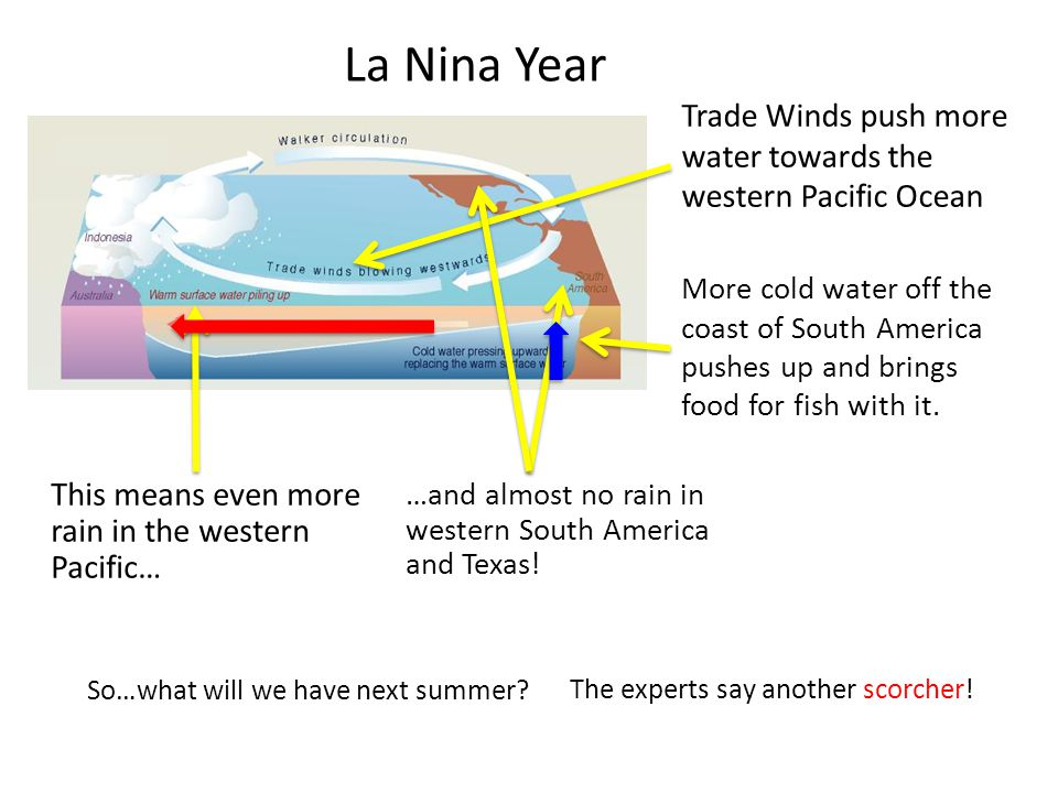 La Nina Year Trade Winds push more water towards the western Pacific Ocean.