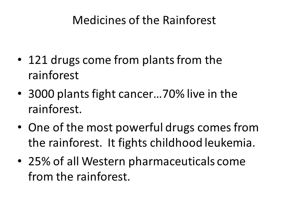 Medicines of the Rainforest