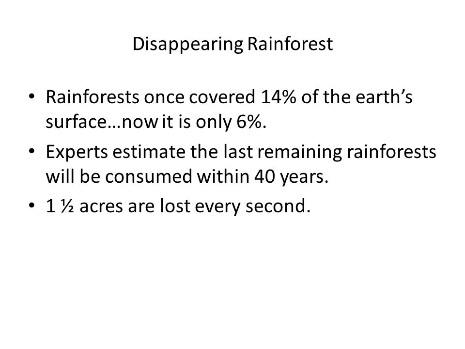 Disappearing Rainforest