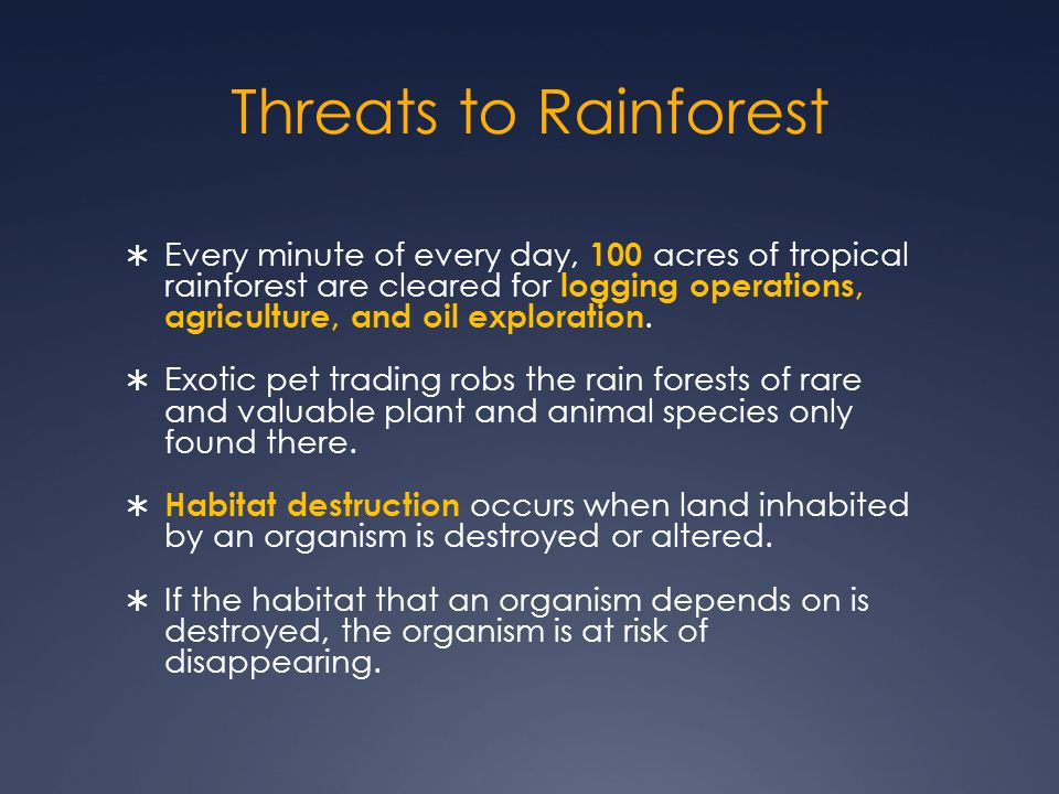 Threats to Rainforest