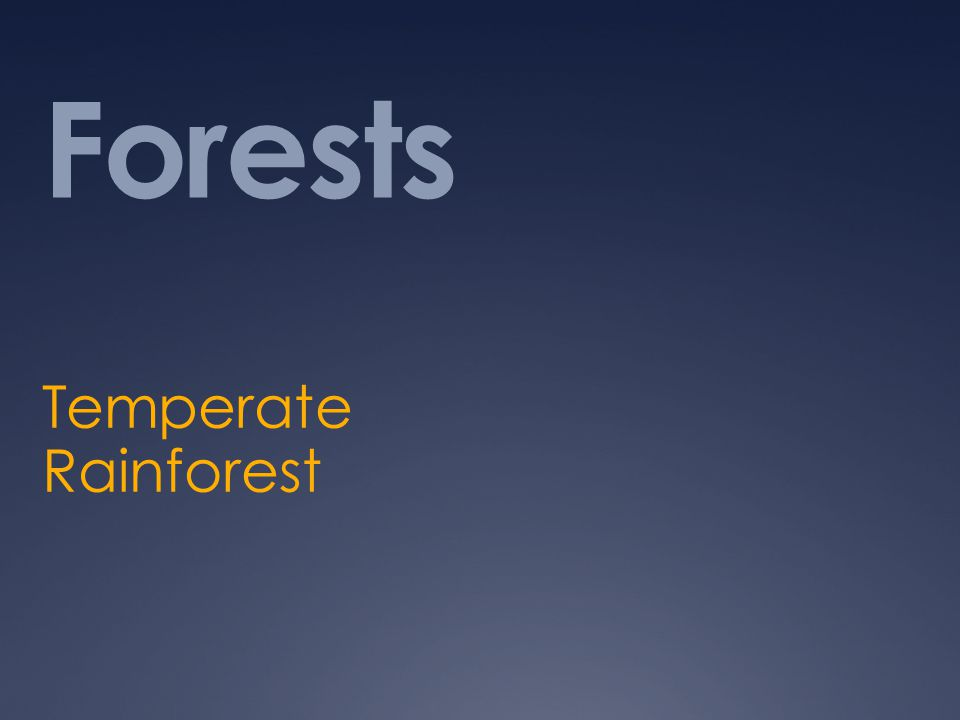 Forests Temperate Rainforest
