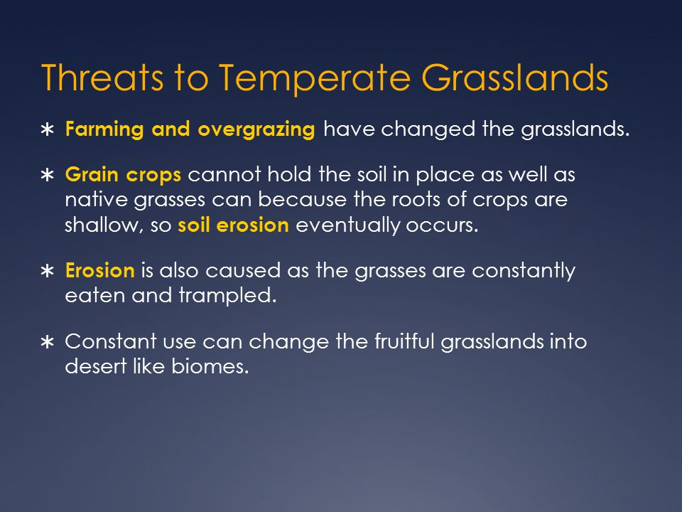 Threats to Temperate Grasslands