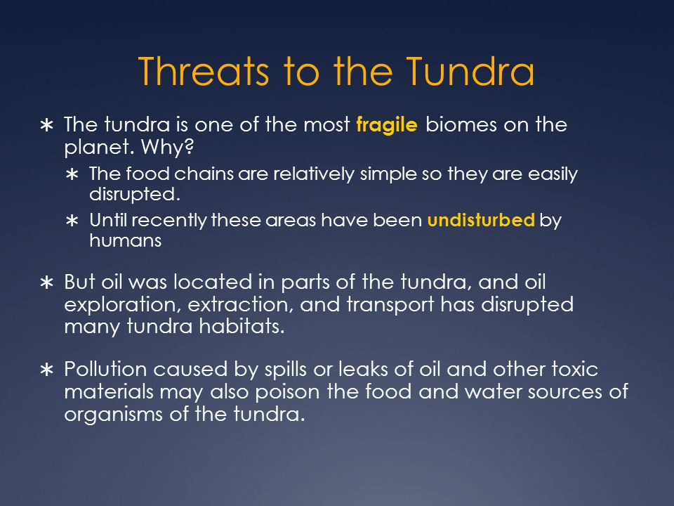 Threats to the Tundra The tundra is one of the most fragile biomes on the planet. Why