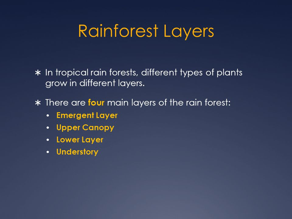 Rainforest Layers In tropical rain forests, different types of plants grow in different layers. There are four main layers of the rain forest: