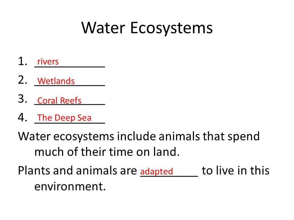 Water Ecosystems ___________