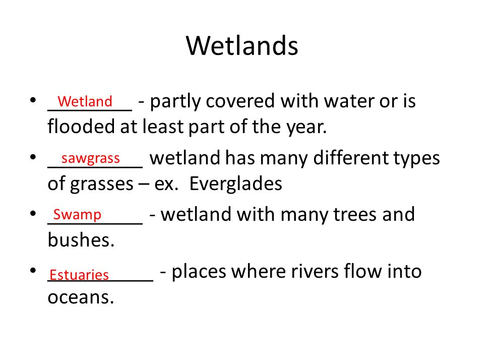 Wetlands ________ - partly covered with water or is flooded at least part of the year.