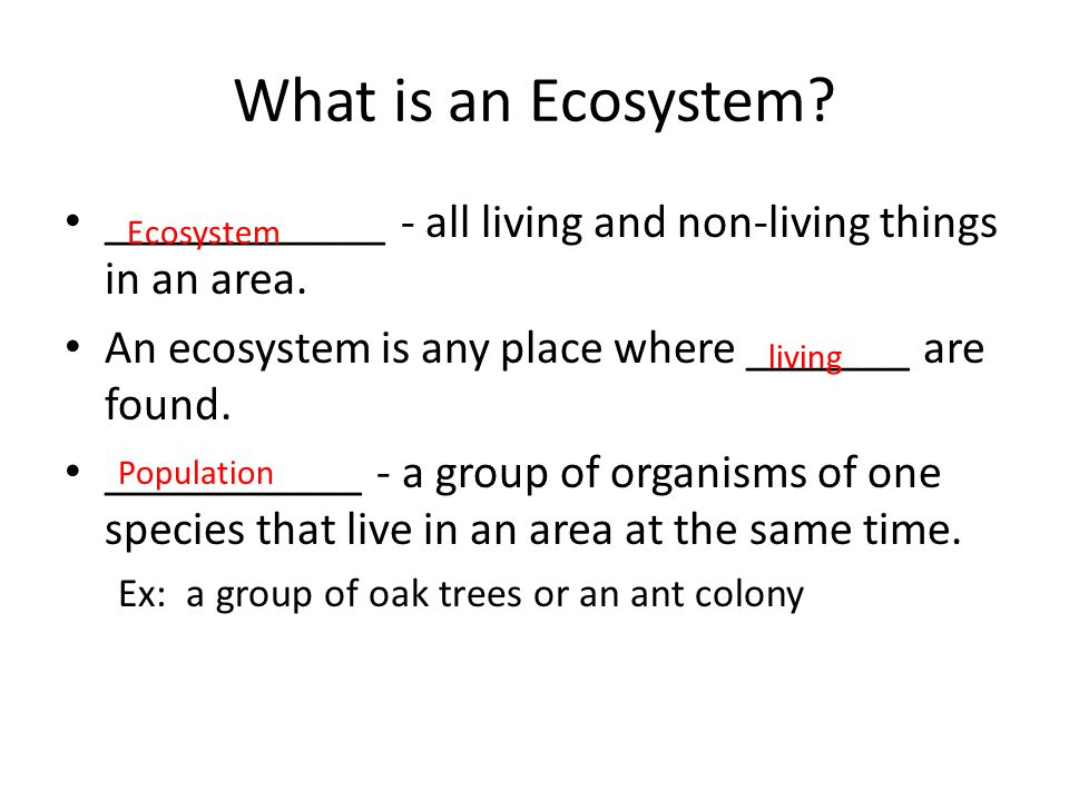 What is an Ecosystem ____________ - all living and non-living things in an area. An ecosystem is any place where _______ are found.