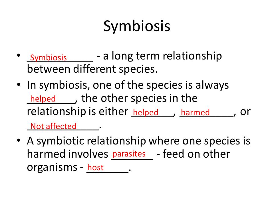 Symbiosis ___________ - a long term relationship between different species.