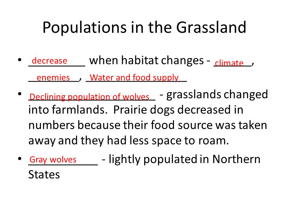 Populations in the Grassland