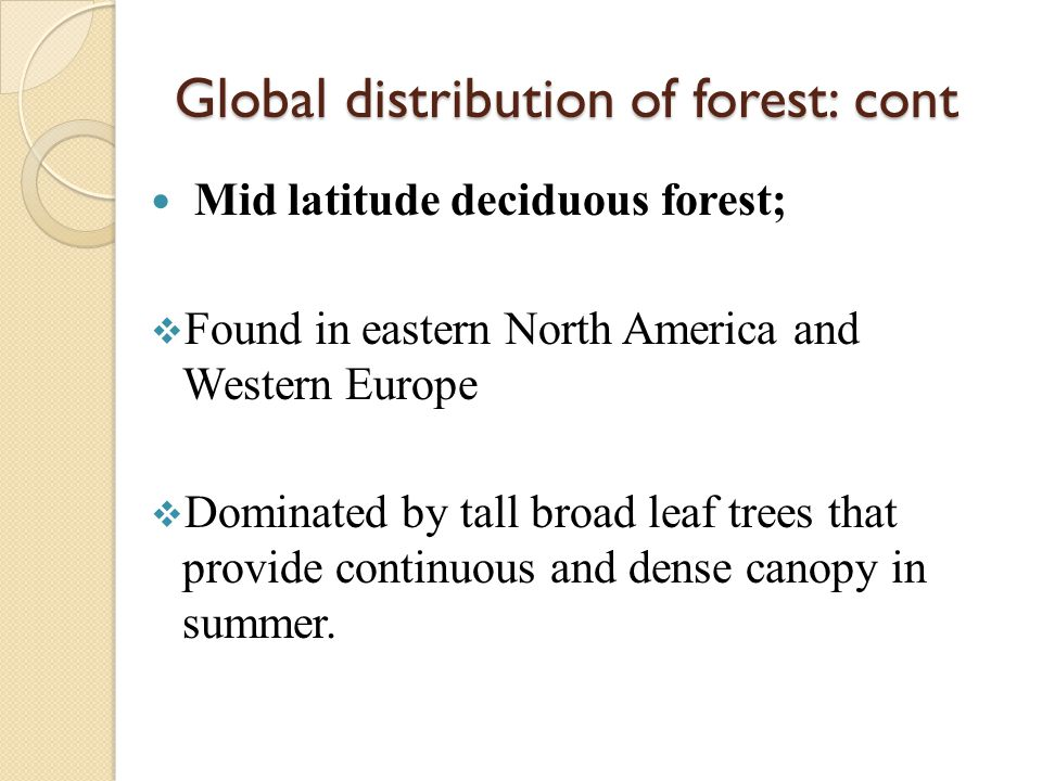Global distribution of forest: cont